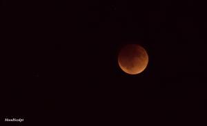 Blood Moon 9
