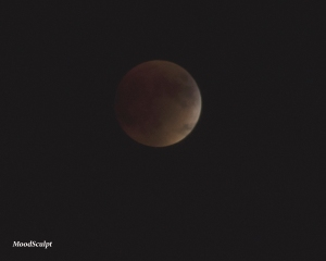 Blood Moon1